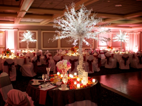 Wedding in Ballroom with lights