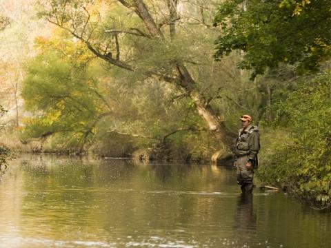 Angler on stream