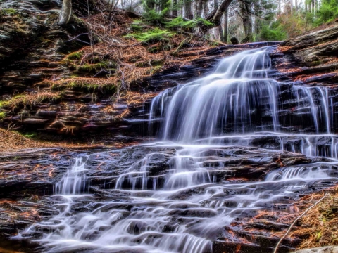 Ricketts Glen Outdoor Package